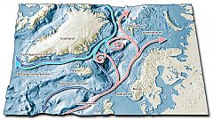 Red: The Gulf Stream Light blu: The East-Greenland Stream Dark blue: Cold deep sea streams. Illustration: Tor Sponga.